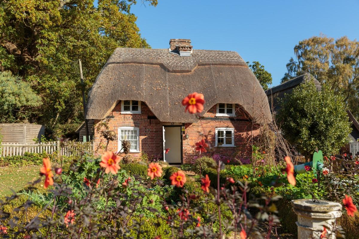 Furzey cottage & garden in the autumn