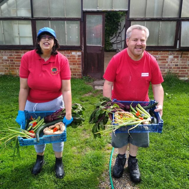 """Here's a post from the veg patch. Gemma and Tim have been busy this morning preparing the first orders from the @minsteadcommunityshop . Tim said """"I helped plant them all"""""""