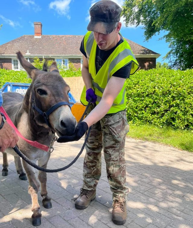 Here's a post from animal care. Roddy here giving Alfie a carrot. We've had great weather these last few days to get walking lots with our animals. Roddy has learnt to be patient with the donkeys and helps lead them safely around the grounds. Well done Roddy!