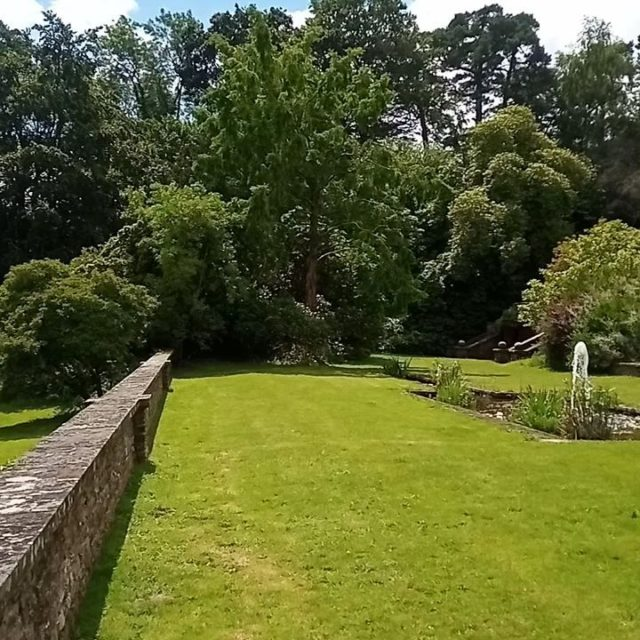 Are you looking for a beautiful venue to hold an event or celebration? The lodge gardens have stunning views of the New Forest and provides the perfect backdrop for your special day.  For more information or to contact us, please visit our website:  https://www.minsteadtrust.org.uk/minstead-lodge/celebrations-and-events/?fbclid=IwAR3Q4oAK7XC0u0EyJfuwGnI8lJMaCWMfEtRRan12UgYgMCDCP69K0EAOOSg  #newforestevents #newforestvenue #newforestnpa #newforestweddings #outdoorwedding #outdoorevents #newforestcelebration #countryhouse #countryhousewedding #countryhousevenue #countryhousegardens #englishcountrygardenwedding #englishcountrygarden
