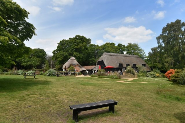 The weather is set fair for outdoor theatre on the lawn at Furzey THIS WEEK!   Make the most of the last of the good summer weather and grab your tickets now for this joyful performance by West End actors.  Buy now: http://ow.ly/GB5i50FVn0z