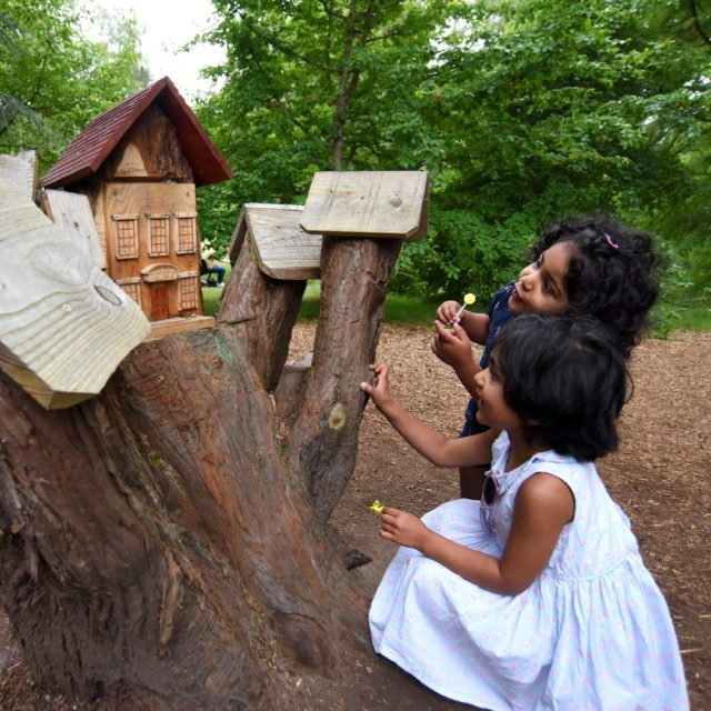 Fairy hunting at Furzey Gardens. A perfect day out this weekend.  There are over 40 fairy doors to find, secret paths to explore and a playarea to let imaginations run wild.   Book your visit at furzey-gardens.org