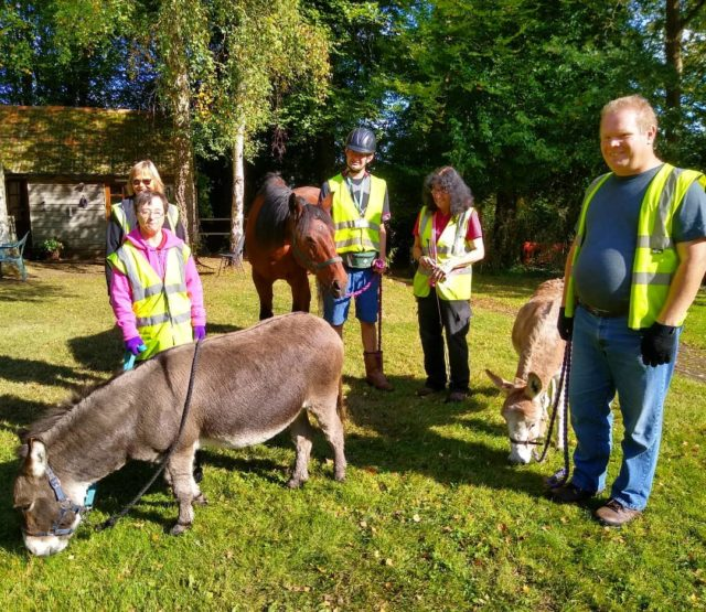What glorious day to be out walking the animals. Today they've taken Jack, Alfie and senator around the trust to bask and graze in the October sun